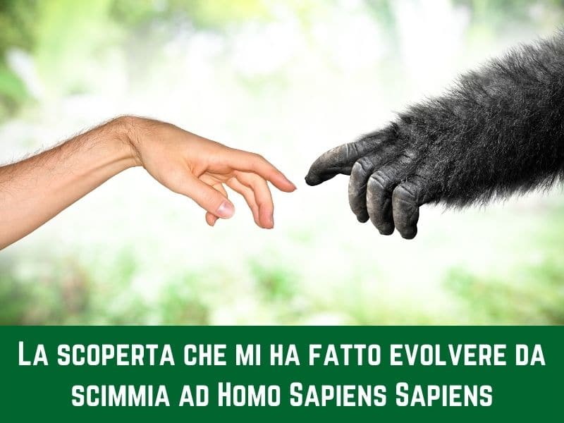 La scoperta che mi ha fatto evolvere da scimmia ad Homo Sapiens Sapiens